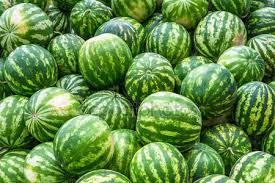 vattenmelonjpg
