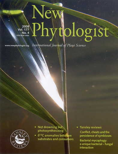 New Phytologist cover photo by Ole Pedersen