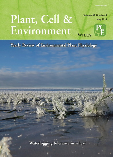 Plant Cell and Environment cover photo by Ole Pedersen