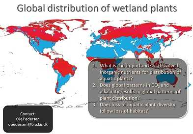 Global distribution of wetland plants by Ole Pedersen