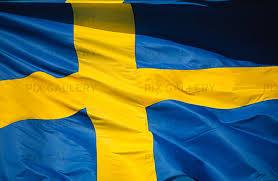 Svenska flagganjpg