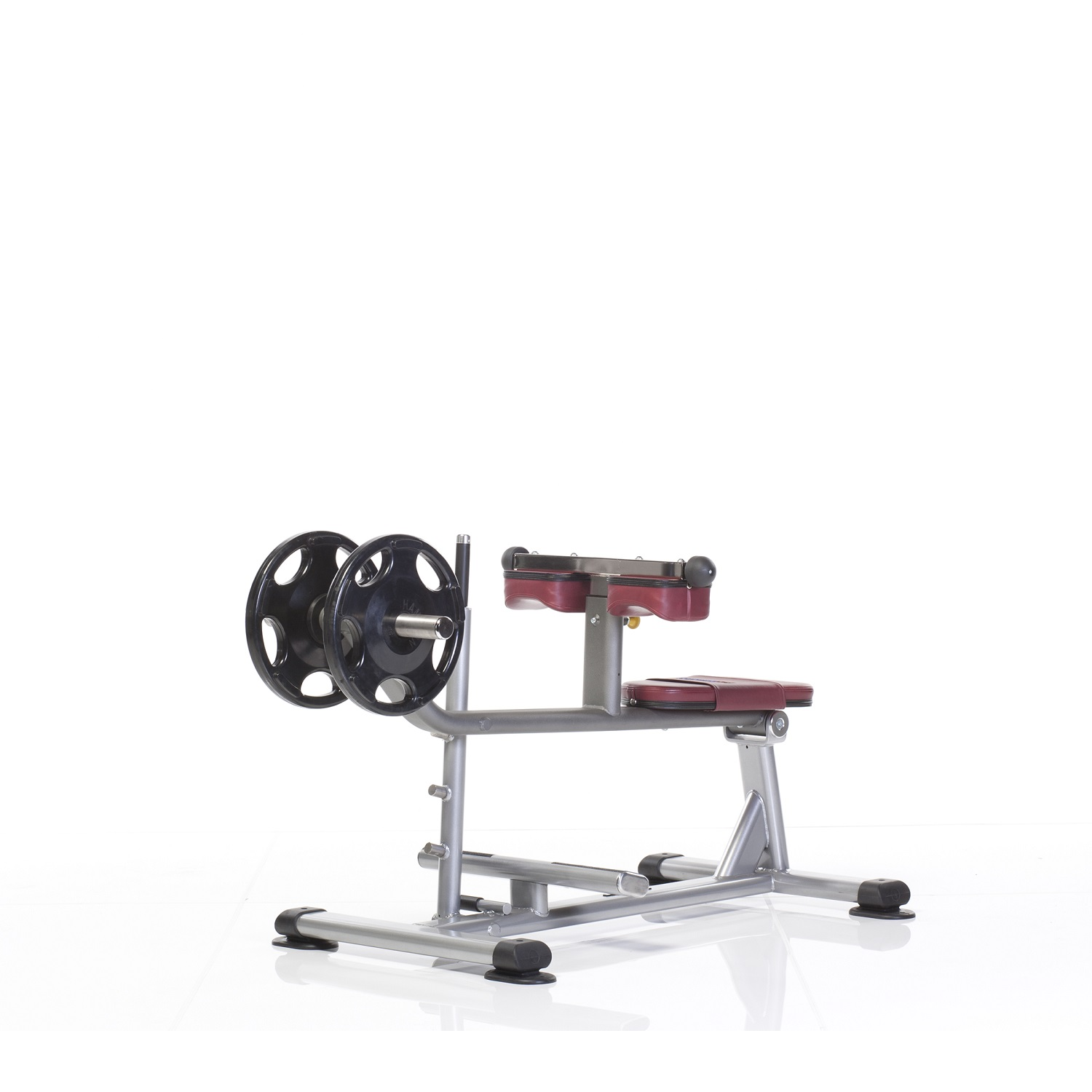 PPL-955 Seated Calf