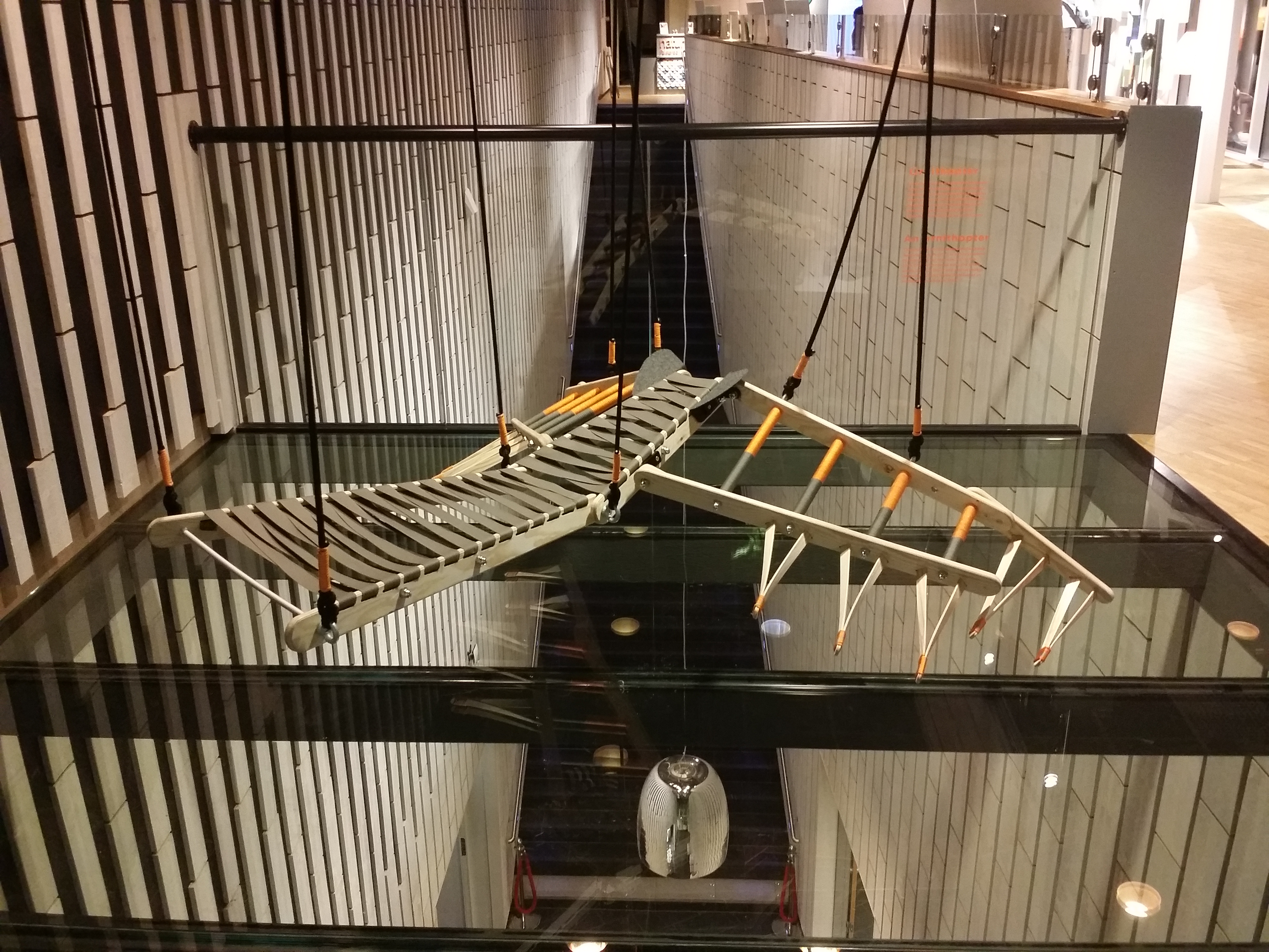 "*Ornithopter from Greek ornithos ""bird"" and pteron ""wing""."